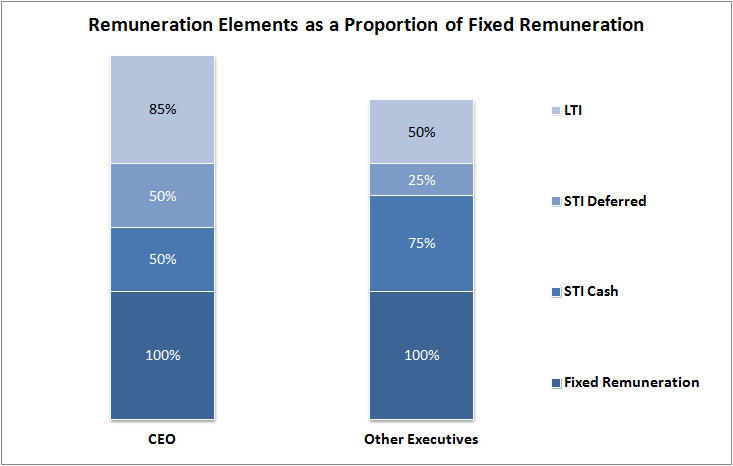 Remuneration Elements as a Proportion of Fixed Remuneration